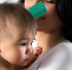 Productos anti piojos para bebé